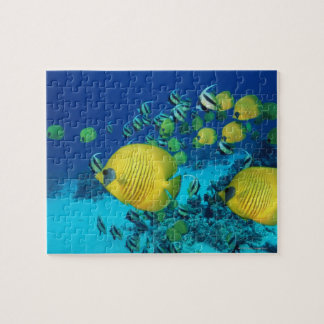 School of Butterfly Fish Swimming on the Seabed Jigsaw Puzzles