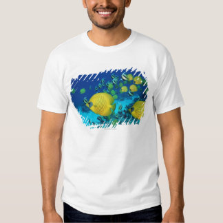 School of Butterfly Fish Swimming on the Seabed T Shirt