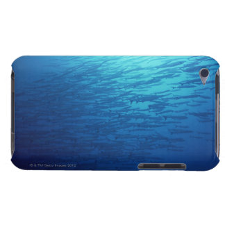 School of Fish 12 iPod Case-Mate Cases