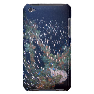 School of Fish 13 Case-Mate iPod Touch Case