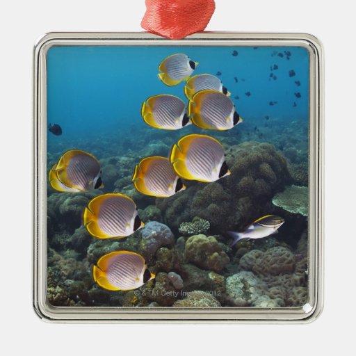 School of Fish 2 Ornament