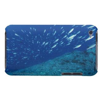 School of Fish 6 iPod Case-Mate Case