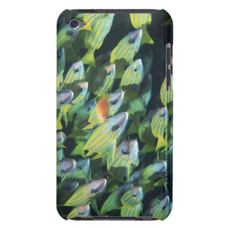 School of Fish 7 iPod Touch Case