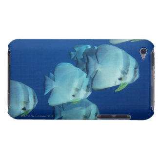School of Fish Barely There iPod Cases