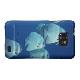 School of Fish Samsung Galaxy S2 Covers
