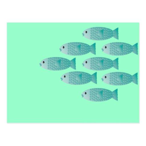 school of fish post card