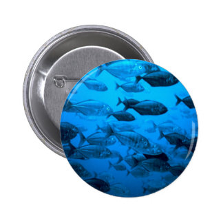 School of Jack Fishes Pin