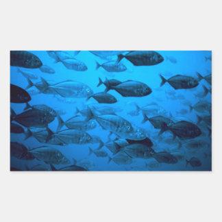 School of Jack Fishes. Rectangular Sticker
