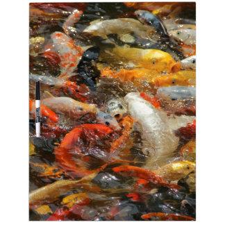 School of Koi Fish Dry Erase White Board