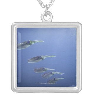 School of squid in the Caribbean Silver Plated Necklace