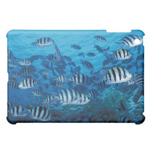 School of Striped Fish iPad Mini Covers