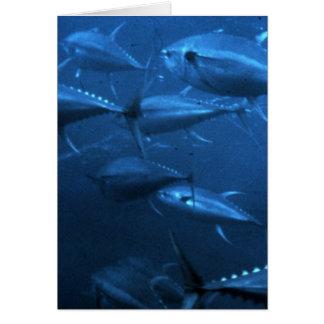School of Yellowfin Tuna Greeting Card