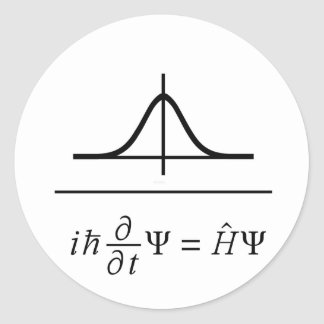Schrödinger Equation Classic Round Sticker