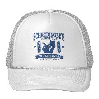 Schrodinger's Cat Dead or Alive Quantum Mechanics Cap
