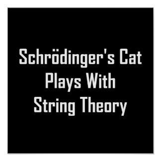 Schrodinger's Cat Plays With String Theory Poster