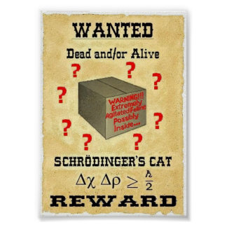 Schrodinger's Cat Wanted Poster