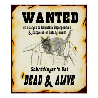 """Schrodinger's Cat """"Wanted"""" Poster"""