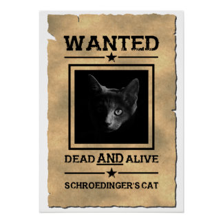 Schroedinger's Cat Wanted Poster | Physics Joke