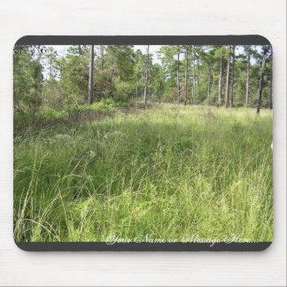 Schwalbea americana habitat mouse pad