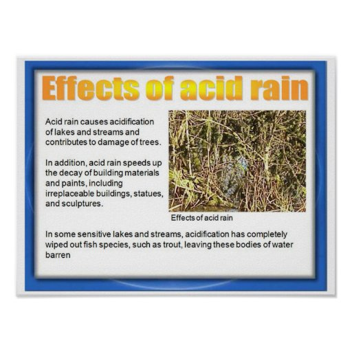 Science, Chemistry,  Effects of acid rain Poster