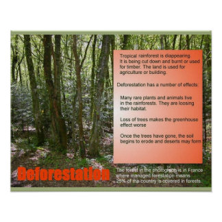 Science Life Science Deforestation Poster