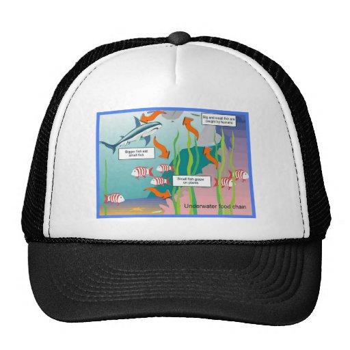 Science, Underwater food chain Trucker Hat