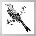 Scissortail Realistic Bird Sketch Posters
