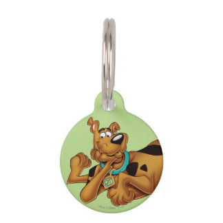 Scooby Doo Airbrush Pose 13 Pet ID Tag