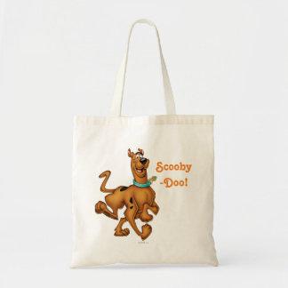 Scooby Doo Airbrush Pose 3