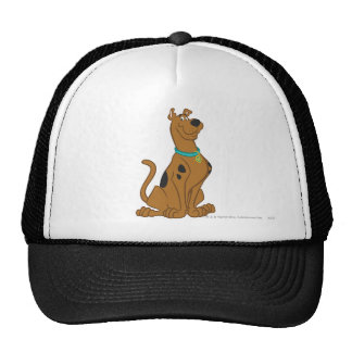 Scooby Doo Cuter Than Cute Pose 15 Cap