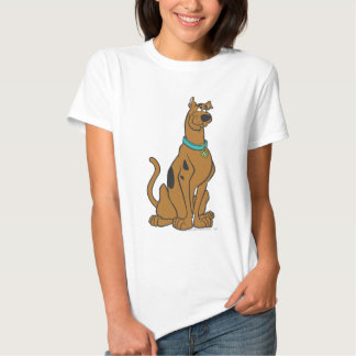 Scooby Doo Pose 27 Tshirts