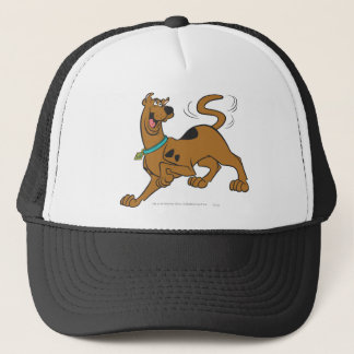 Scooby Doo Pose 41 Trucker Hat