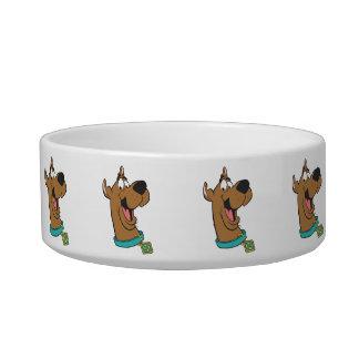 Scooby Doo Pose 85 Bowl