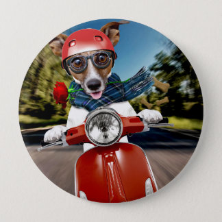 Scooter dog ,jack russell 10 cm round badge