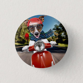 Scooter dog ,jack russell 3 cm round badge