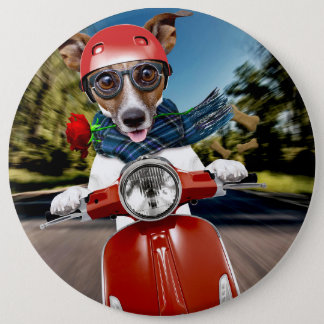 Scooter dog ,jack russell 6 cm round badge