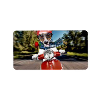 Scooter dog ,jack russell address label