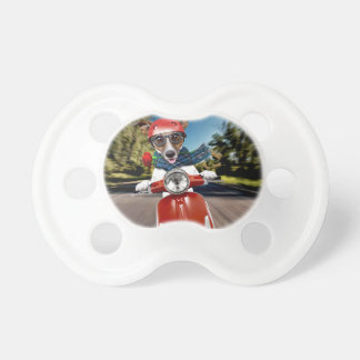 Scooter dog ,jack russell baby pacifier
