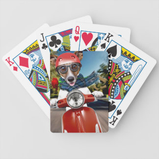 Scooter dog ,jack russell bicycle playing cards