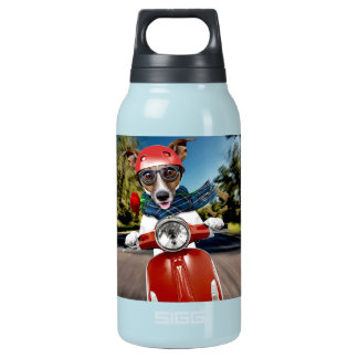 Scooter dog ,jack russell insulated water bottle