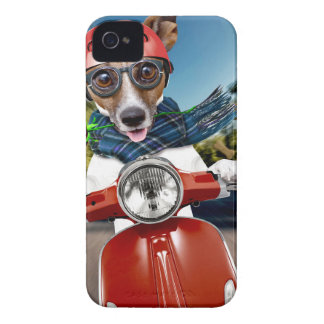 Scooter dog ,jack russell iPhone 4 cover