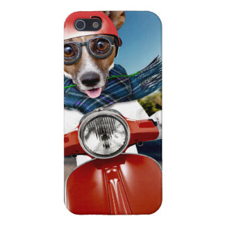 Scooter dog ,jack russell iPhone 5 cases