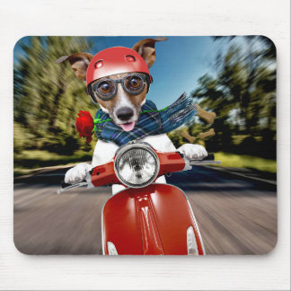 Scooter dog ,jack russell mouse pad