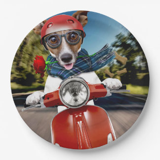 Scooter dog ,jack russell paper plate
