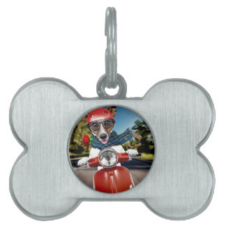 Scooter dog ,jack russell pet name tag
