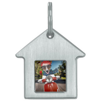 Scooter dog ,jack russell pet tag
