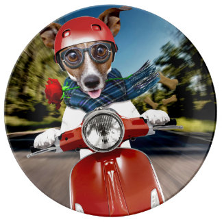 Scooter dog ,jack russell plate