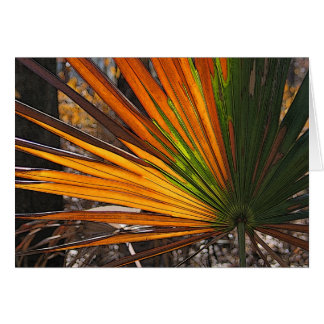Scorched Palmetto Card