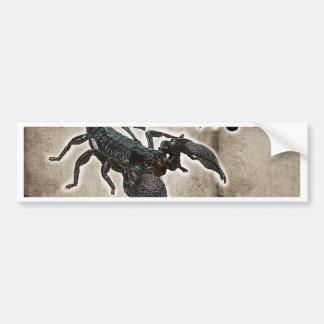 scorpio astrology 2017 bumper sticker