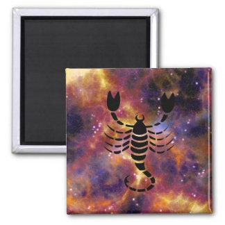 Scorpio Horoscope Zodiac Sign Magnet